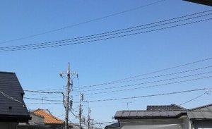 NCM_0416.jpg